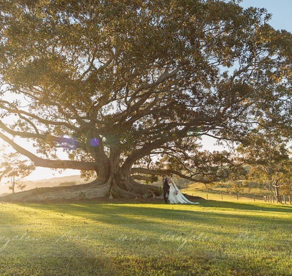 Kimberley & Justin - a Byron Bay Wedding