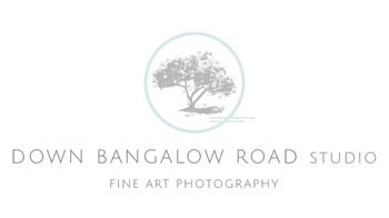 Down Bangalow Road
